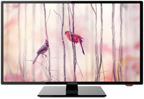 LCD телевизор Thomson T24E21DF