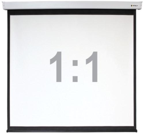 Проекционный экран DIGIS Electra-F 1:1 [Electra-F 300x300]