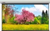 Проекционный экран Lumien Master Large Control [Master Large Control 510x296]