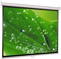 Проекционный экран ViewScreen Scroll 1:1 [Scroll 150x150]