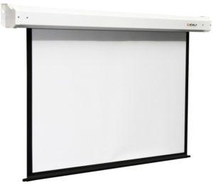 Проекционный экран DIGIS Electra 4:3 [Electra 290x215]