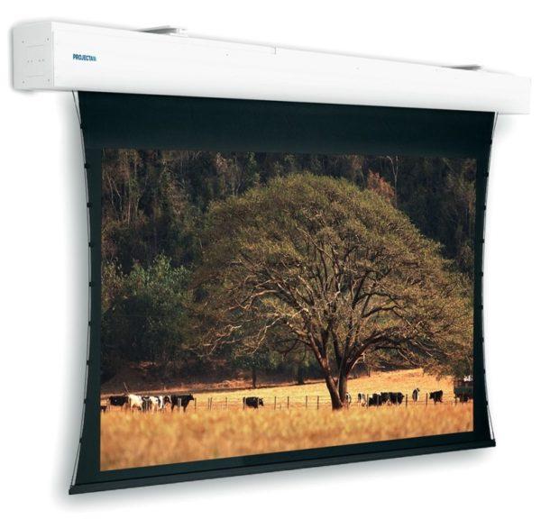 Проекционный экран Projecta Tensioned Elpro Large Electrol 4:3 [Tensioned Elpro Large Electrol 400x300]