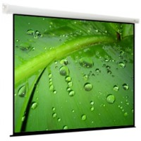 Проекционный экран ViewScreen Breston 1:1 [Breston 244x244]