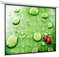 Проекционный экран ViewScreen Lotus 1:1 [Lotus 305x305]