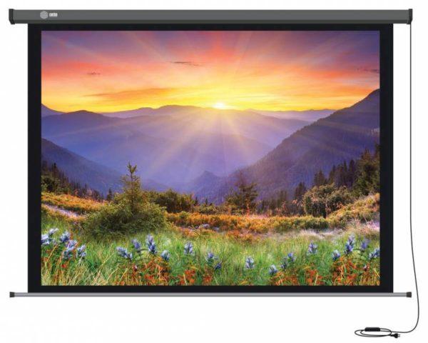 Проекционный экран CACTUS Professional Motoscreen [Professional Motoscreen 265x149]