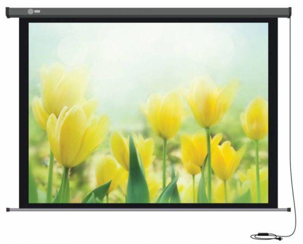 Проекционный экран CACTUS Professional Motoscreen 4:3 [Professional Motoscreen 244x183]