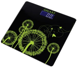 Весы Galaxy GL4802